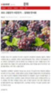 사본 -사본 -매일신문.jpg