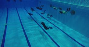 Фридайверы в бассейне