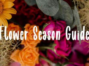 Flower Season Guide: Schnittblumen nach Jahreszeit – für jede Saison