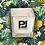 Thumbnail: --------- Bougie parfumée --------- L'EGREGORE