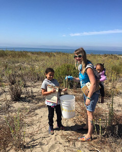 California Coastal Clean Up