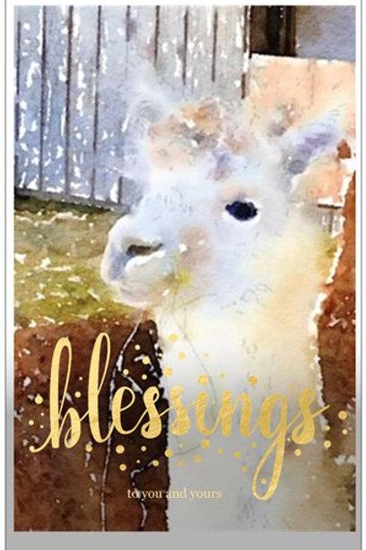"""Dalton"" Christmas Card Set of 5"