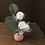 Thumbnail: Mini White Flowers