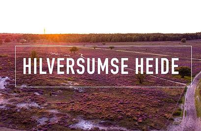 Heide3.jpg