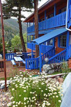 Summertime at Terrace Towers Lodge - 1