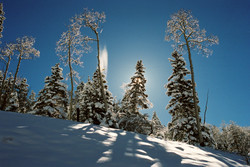 New Fallen Snow in Upper Red River Valle