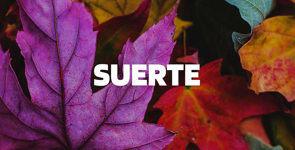 Suerte | Reggaeton (Derechos)