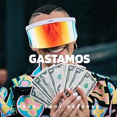 Cover Gastamos.jpg