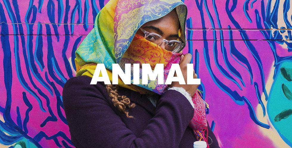 Animal | Trapeton (Ilimitada)