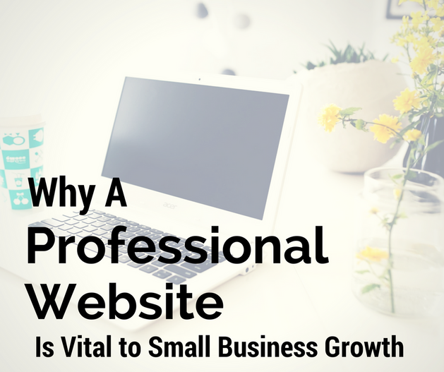 Why A Professional Website Is Vital To Small Business Growth