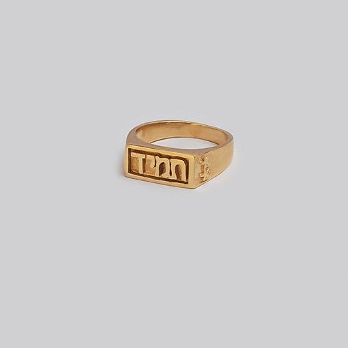 טבעת חותם זהב | תמיד
