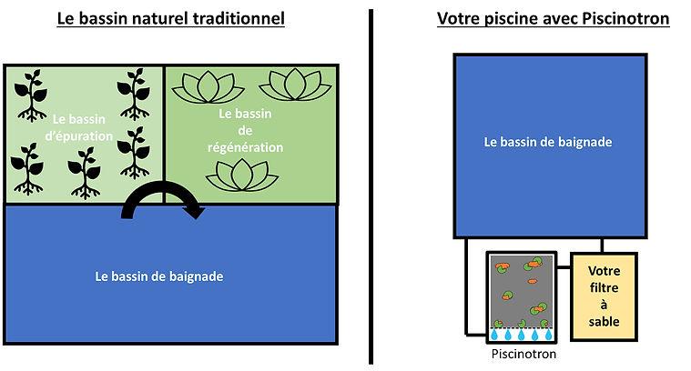 2_Image schema bassin naturel vs Piscino