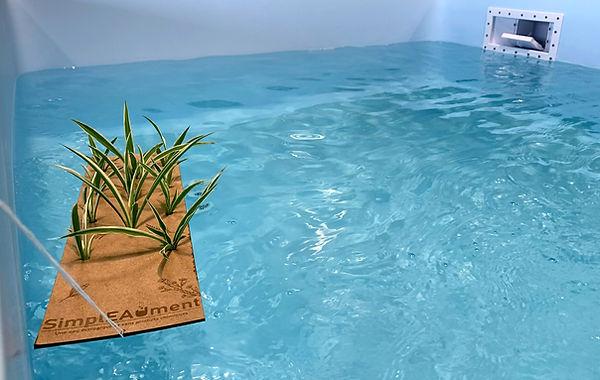 Image piscine SimplEAUment.jpg