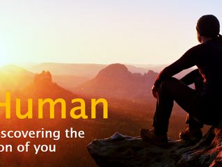 What is ProHuman?
