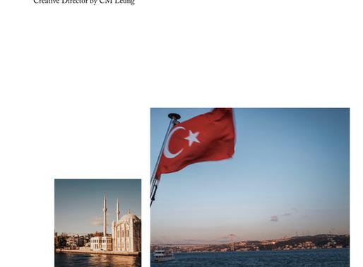 Istanbul Turkey engagement portraits - angel + lon