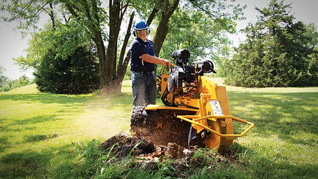 stump cutter.jpg