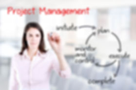 Ame Management Group Project Management Services