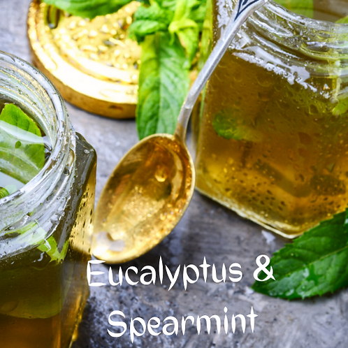 Eucalyptus & Spearmint Shampoo/Body Wash