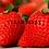 Thumbnail: Strawberry Lip Balm