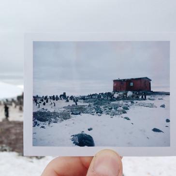 D'Hainaut Island, Antarctica
