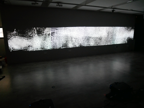 Andrew Carnie, 'Here There Everywhere (Winter Tree)', 2019, still from 4 channel HD video, the Winter Tree Project, 4 projectors, 12m x 2.5m x 5m, continuous loop