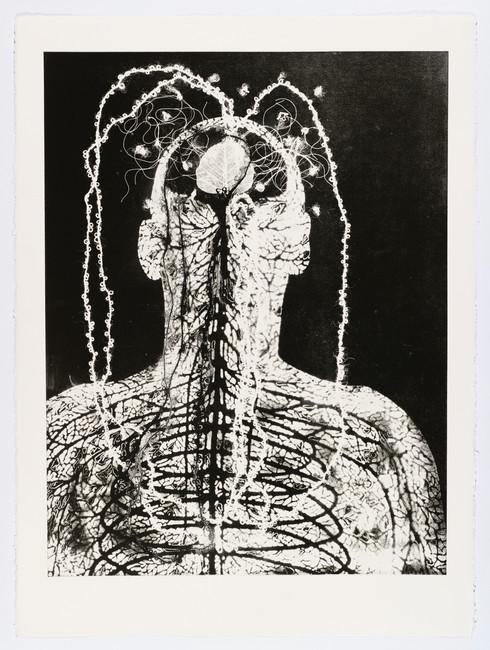 "Andrew Carnie and Susan Aldworth, ""Enlightenment no 7"" 2015, monotype print, 80cm x 70cm"