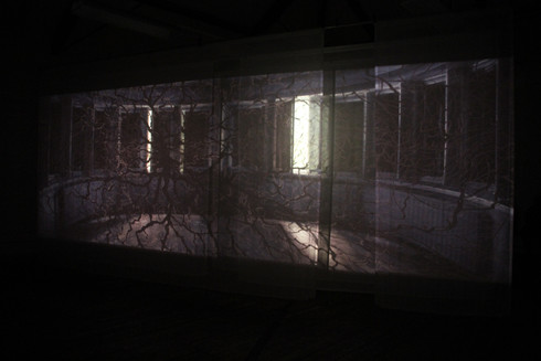 """Andrew Carnie, """"Dark Garden: Heard with a Different Voice"""", 2012, 35mm slide projection, 4 projectors, voile screens, 8m x 10m x 3m, continuous loop"""