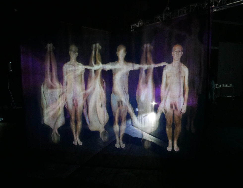 """Andrew Carnie, """"The You In Me"""", 2019, 3 channel HD video, three projectors, and three voile screens, 10m x 10m x 3m"""