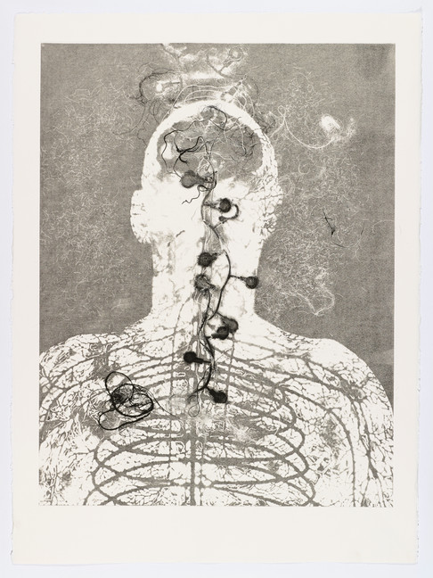 "Andrew Carnie and Susan Aldworth, ""Enlightenment no 2"" 2015, monotype print, 80cm x 70cm"