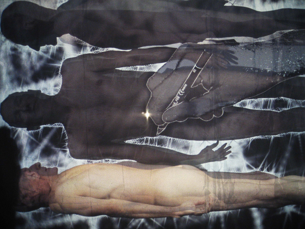 """Andrew Carnie, """"Seized: Out of this World"""", 2008, multi channel video, voile screens, dimensions variable"""