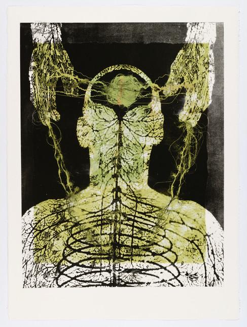 "Andrew Carnie and Susan Aldworth, ""Enlightenment no 16"" 2015, monotype print, 80cm x 70cm"