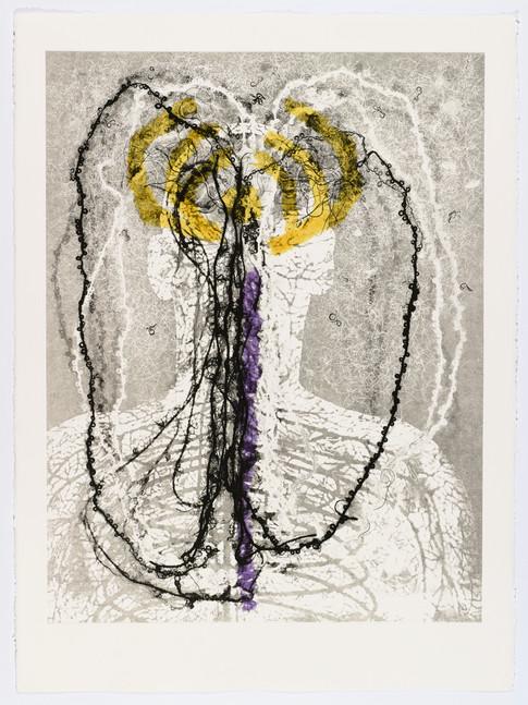 "Andrew Carnie and Susan Aldworth, ""Enlightenment no 9"" 2015, monotype print, 80cm x 70cm"