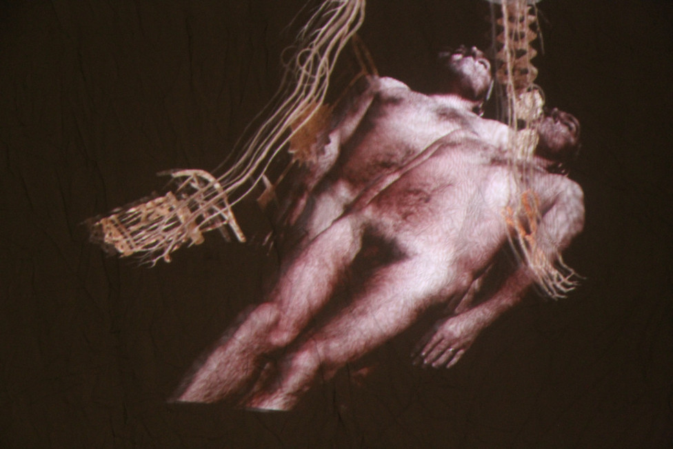 """Andrew Carnie, """"Heart and Mind: Who is Knocking"""", 2013 HD video projection, 3m x 3m x 4m, 19 mins duration"""