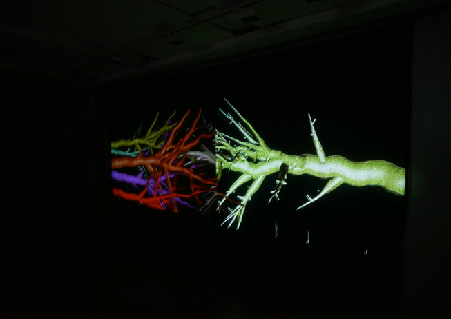 Andrew Carnie, 'As Things Come to Pass (Winter Tree)', 2019, still from 2 channel HD video, the Winter Tree Project, 2 projectors, 6m x 2.5m x 5m, continuous loop