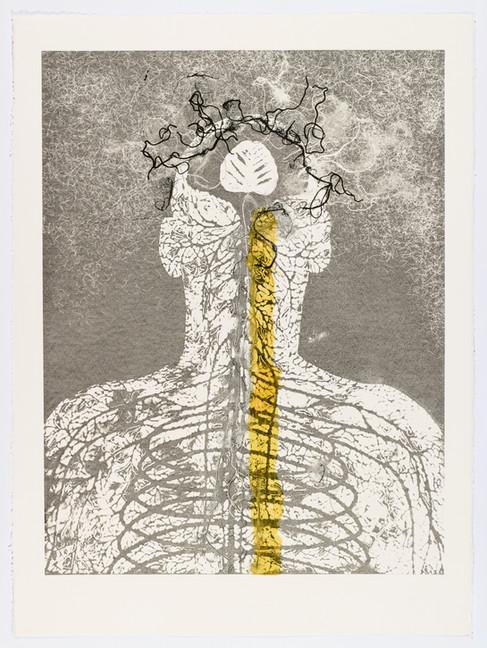 "Andrew Carnie and Susan Aldworth, ""Enlightenment no 5"" 2015, monotype print, 80cm x 70cm"