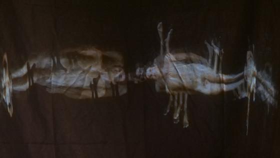 "Andrew Carnie, ""The Gatekeeper"", 2017, 25 min HD Video projection, 3m x 2.5m x 4m"