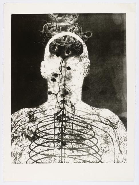 "Andrew Carnie and Susan Aldworth, ""Enlightenment no 1"" 2015, monotype print, 80cm x 70cm"