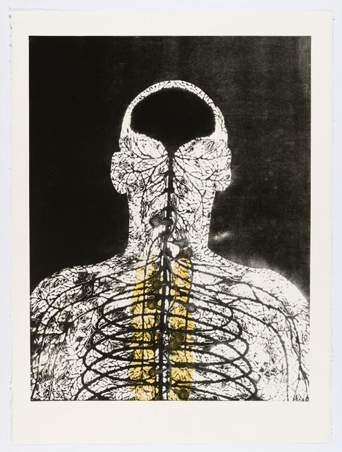 "Andrew Carnie and Susan Aldworth, ""Enlightenment no 4"" 2015, monotype print, 80cm x 70cm"