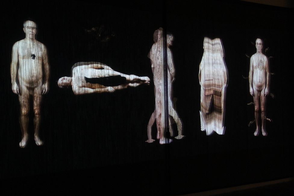 """Andrew Carnie, """"A Change of Heart"""", 2012, HD video projected on voile screen, 6m x 2.5 m x 4m, 20 mins"""