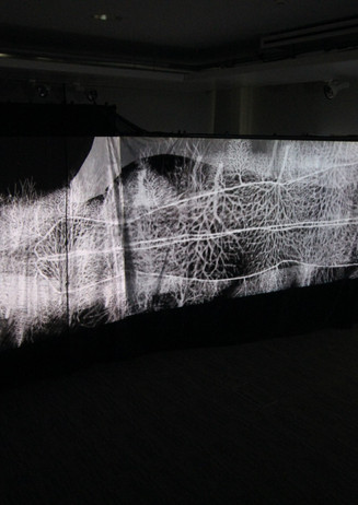 Andrew Carnie, 'Here There and Everywhere', 2020, 4 channel HD Video, dimensions variable