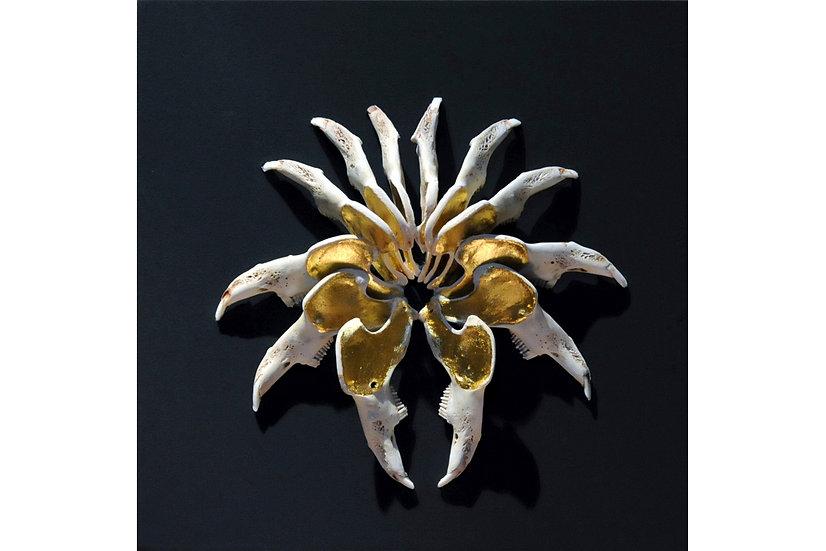 Golden Jaw IV