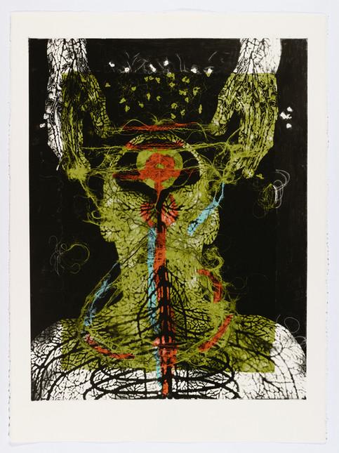 "Andrew Carnie and Susan Aldworth, ""Enlightenment no 19"" 2015, monotype print, 80cm x 70cm"
