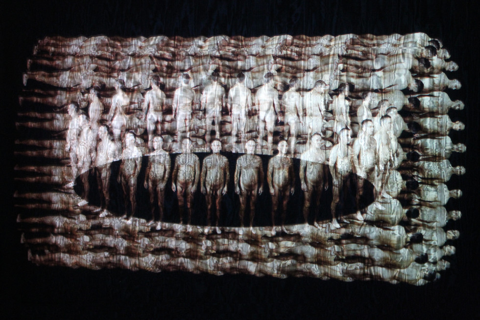 """Andrew Carnie, """"Lacuna"""" 2012, HD video projected on voile screen, 3m x 2.5 m x 4m, 9 mins"""