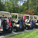 Bags lined up on carts.jpg