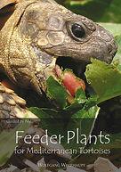 Feeder Plants.jpg