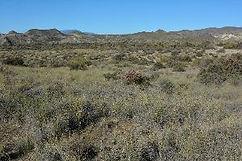 Spanien Habitat Hinterland.jpg
