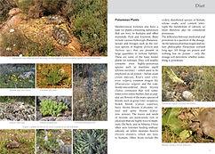 Seite 70 71.jpg