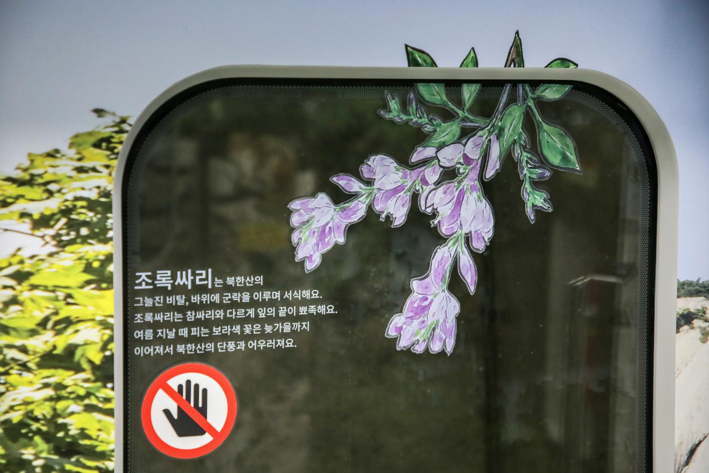 달리는 북한산_Original (28)