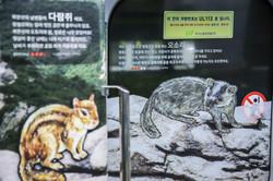 달리는 북한산_Original (32)