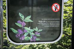 달리는 북한산_Original (27)